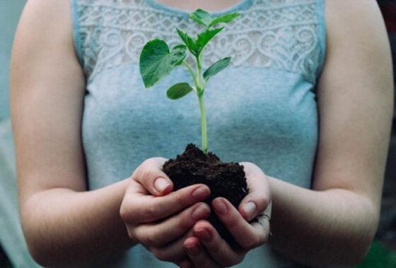 【たんぱく質の役割】持続可能な体を作ろう!