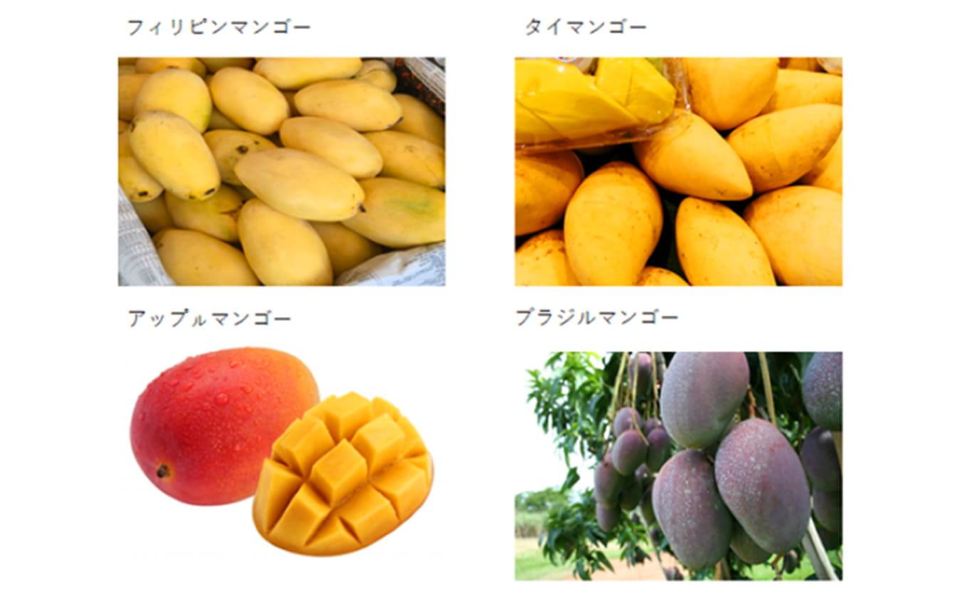 フィリピンマンゴー、タイマンゴー、アップルマンゴー、ブラジルマンゴー